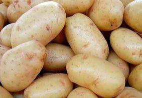 Produto à base de batata inglesa é criado para tratamento de úlcera gástrica na PB