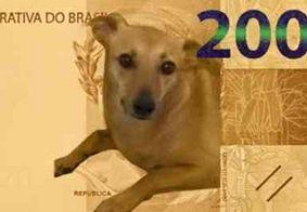 Confira memes da cédula R$ 200