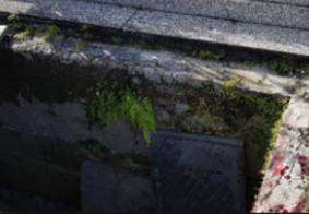 Na PB: Na hora de enterrar parente, familiares descobrem que túmulo foi utilizado por outra pessoa