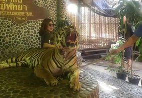 Vídeo: Tratado como atração turística, tigre é cutucado para rosnar em fotos e gera indignação