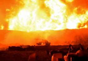 Número de mortes após explosão em oleoduto no México sobe para 66
