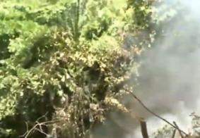 Incêndio atinge áreas de vegetação em João Pessoa