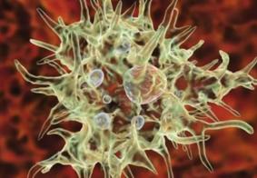 Caso de ameba 'comedora de cérebro' é registrado nos Estados Unidos