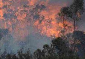 Garoto de 12 anos é suspeito de provocar queimada em região na Austrália