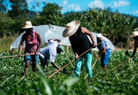 Pesquisadores testam cálculo do PIB Verde em fronteira agrícola