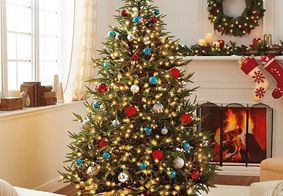Vídeo: confira dicas para montar sua árvore de Natal