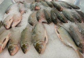 Preço do peixe tem variação de até R$ 30 em mercados públicos de João Pessoa