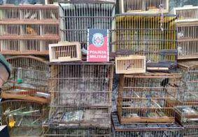 Três homens são presos e mais de 170 aves silvestres são apreendidas durante operação na PB
