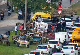 Carroceiros realizam protesto na Zona Sul de João Pessoa
