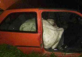 Homens colocam boi dentro de carro após furtarem animal