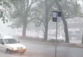 Fortes chuvas derrubam árvores e alagam pontos de BH